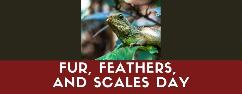 Fur, Feathers, and Scales Day