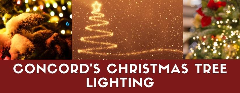 Concord's Christmas Tree Lighting